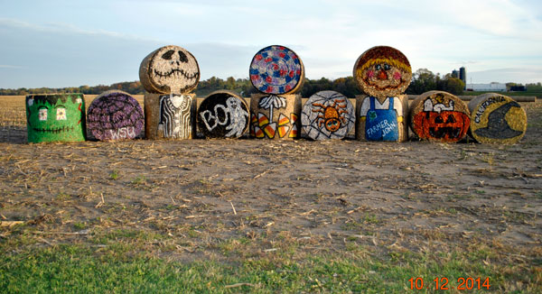 Painted farm bales