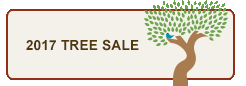 2017 Tree Sale Button