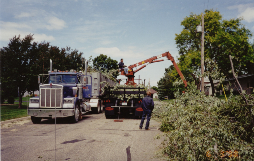 Photo of Public Works excavator clearing branches