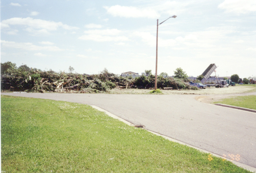 Tree debris on Gorman Street