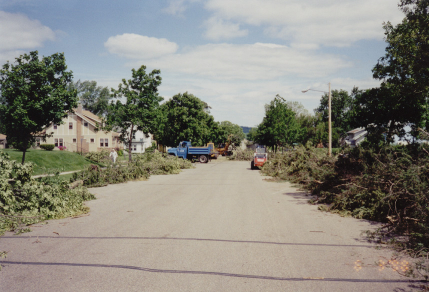 City street after windstorm
