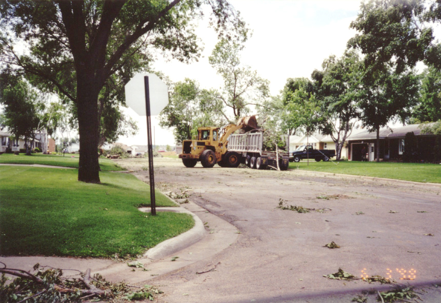 Clearing branches on city street