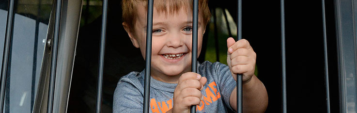 Little boy behind police car bars
